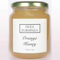 Buy Acacia Honey Online by Olea Europaea at Olive Tree